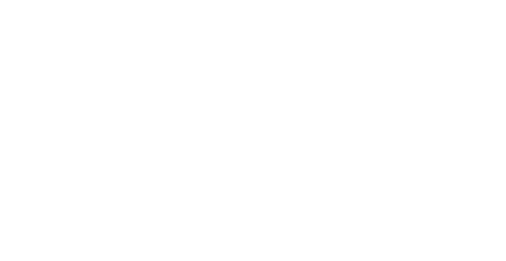 Gullwing Aviation